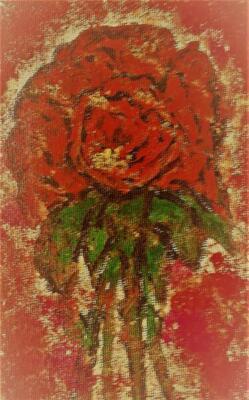 Street Rose