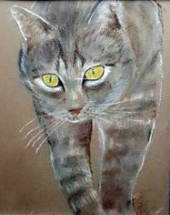 My cat 2